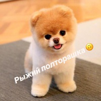 Севинч Фиргатовна