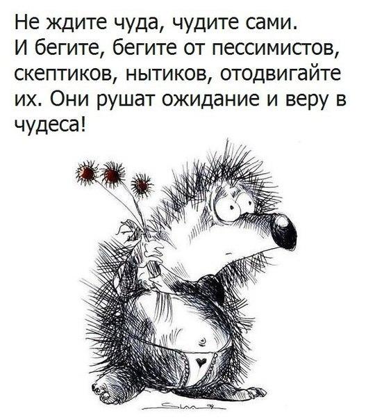 https://pp.vk.me/c836422/v836422663/b3f9/zgOv7hOErFk.jpg