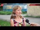 Котов в Доброполье признали частью экосистемы