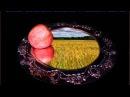 Русская народная сказка Серебряное блюдечко и наливное яблочко