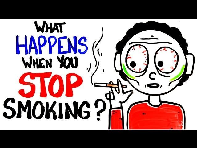 Что происходит с организмом, когда вы бросаете курить? [AsapSCIENCE]