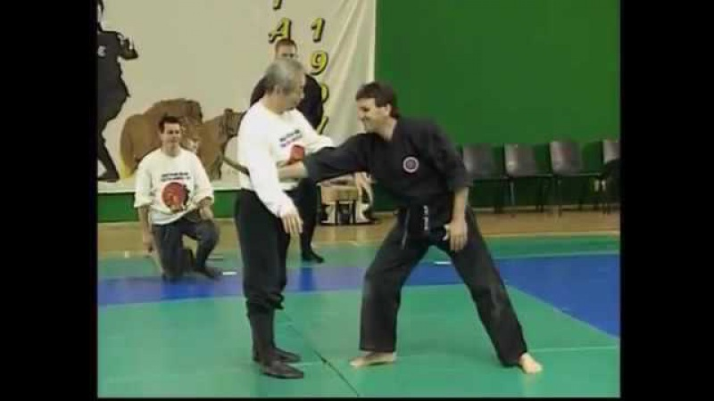 Bujinkan Ninpo: Masaaki Hatsumi Protection against knife