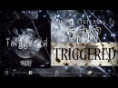 We Own The Night Triggered feat Ilya Mirosh of An Argency Triggered EP 2017 stream