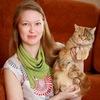 Питомник шотландских кошек Marana