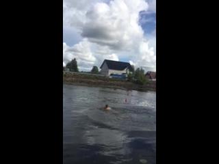 полеск прыжки в воду