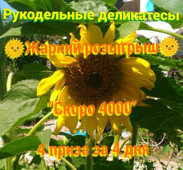 Фото №456246577 со страницы Елизаветы Ловизны