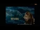 Animal Planet. Человек и львы 1-3 сезоны 1-43 серии из 43 / The Lion Man / 2004-2008 /38