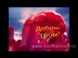 Красивая и живая видео открытка с пожеланием доброго утра