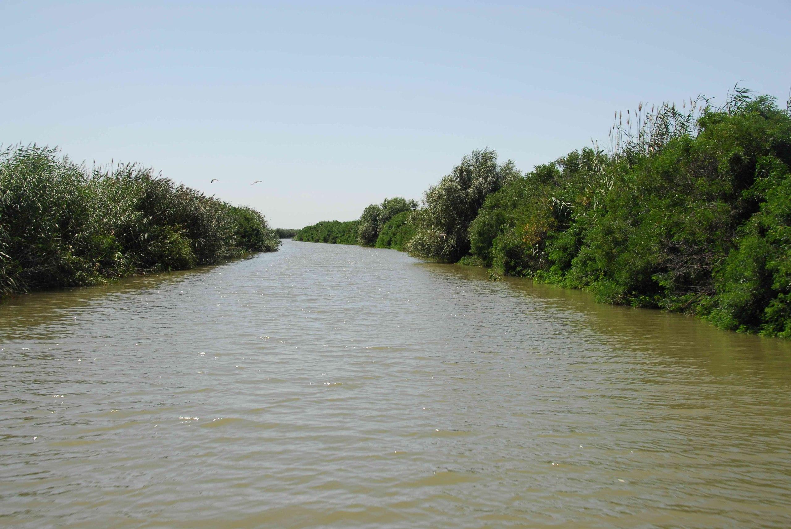 Рыбоходный канал в устье реки Урал