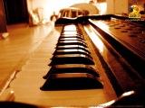 001 Harmonium Srila Prabhupada Pranati &amp panchatatva Pranam