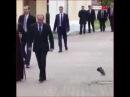Секретный агент Путина