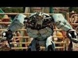 Робот Эмбуш против быка по кличке Чёрный Гром. Ambush versus Bull. Живая Сталь.