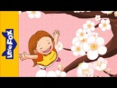 Plum Blossoms Nursery Rhymes by Little Fox