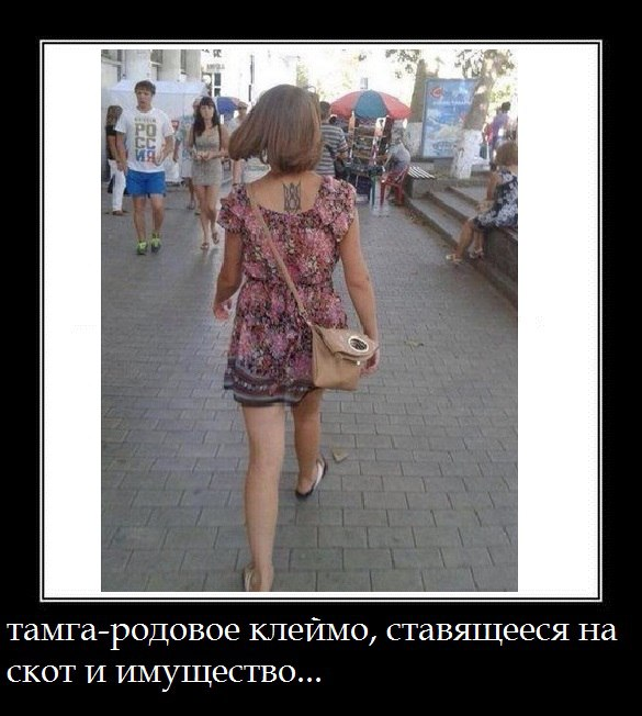 https://pp.userapi.com/c836424/v836424380/59188/7xpJntqVdc4.jpg