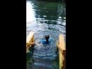 Святой источник преподобного Серафима Саровского. Вода 4 градуса круглый год