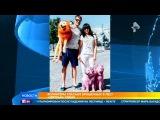 На юге России развернулась целая спецоперация по спасению собак, брошенных на п ...