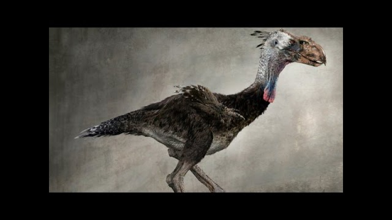 Доисторические Хищники: Хищные Птице-Ящеры. Титанисы \ National Geographic HD