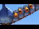Смешная короткометражка О птичках For the birds