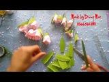 Paper flowers DIY - cách làm hoa giấy - Rơn, Mai, đồng tiền, tầm xuân, tiên ông