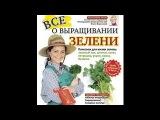 Ч.5. ВСЕ о ВЫРАЩИВАНИИ ЗЕЛЕНИ зеленый лук, шпинат, салат, петрушка, укроп, кинза, б ...