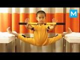 Baby Bruce Lee - Ryusei Imai  Muscle Madness
