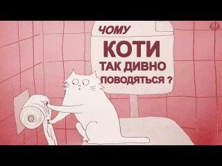 Чому коти так дивно поводяться? [Цікава наука] - Why do cats act so weird [TED-Ed]