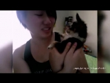 Кошки и собаки  которые не любят целоваться