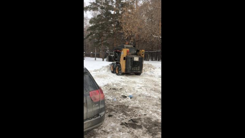 2017-02-01 непосредственно герои видео (утверждают что снег чистый поэтому нормально складывать под елочку с дороги)