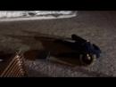 "BackStage со съемок ""Город грехов"" Сцена Mr Flym. part 2"