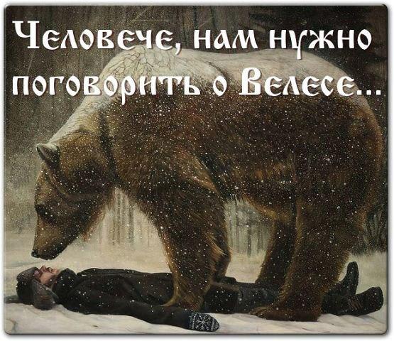 фото из альбома Евгения Митрошкина №2