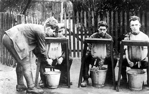 Обучение дояров. Канада, 1927 год.