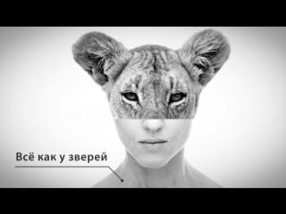 «Наука счастливого детства 2.0»: секреты «котовоспитания» от Евгении Тимоновой