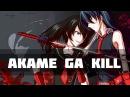 Akame Ga Kill「AMV」1080 ᴴᴰ Akame vs. Esdeath