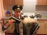 Семен Жоров - Идет солдат по городу! 23 февраля 2015.
