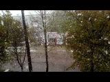 xenia_xstitch video