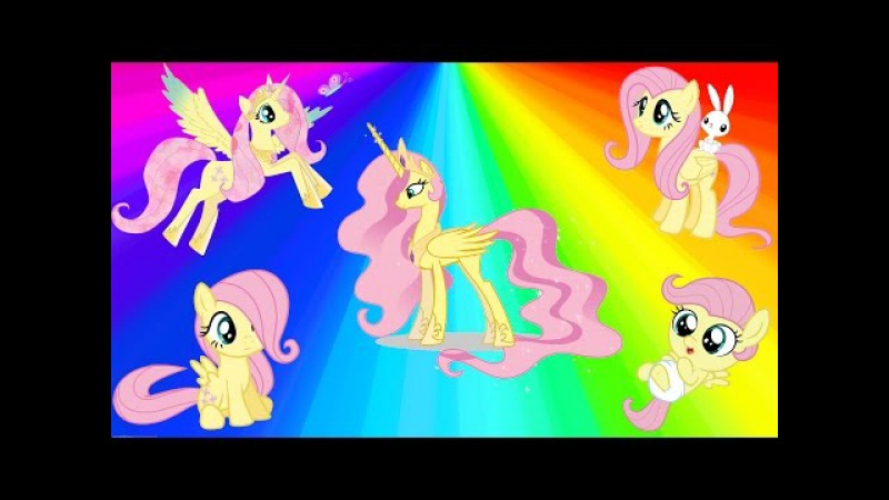 MY LITTLE PONY FLUTTERSHY Transforms Baby Filly Alicorn Princess MLP Coloring Videos For Kids