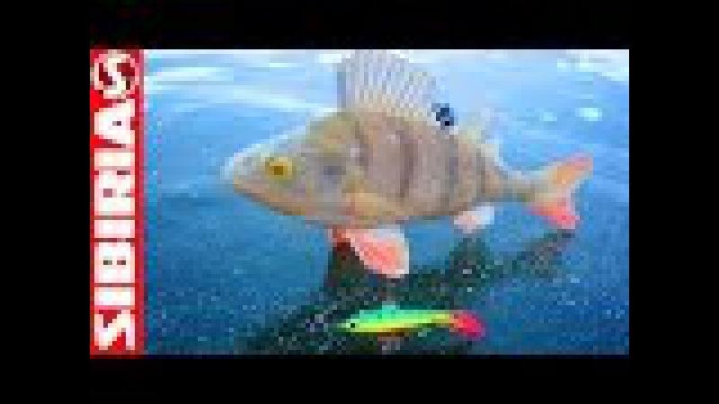 Самый уловистый БАЛАНСИР 5 Лаки Джон в деле Подводная проверка Lucky John на зимней рыбалке