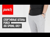 Спортивные штаны Punch - Jog Spring, Grey. Обзор