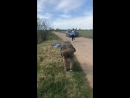 Съёмки клипа Гори
