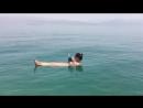 Нудисты отдыхают на Мёртвом море