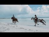 Band of Horses #coub, #коуб