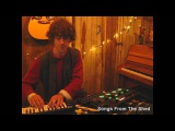 Cosmo Sheldrake - The Moss - Songs From The Shed