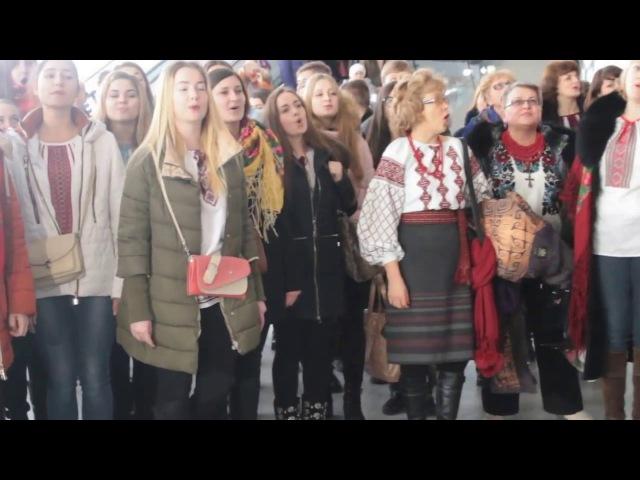 У Львівському аеропорту більше сотні хористів заспівали «Щедрика» (ВІДЕО)
