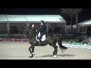 Mikala Gundersen My Lady CDI5* Freestyle