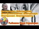 Электровкус Электрозапах Электропамять Электромышление. Рыбников Ю.С..