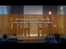 2017 Песенная суббота. Ансамбль аккордеонистов.