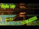 Обыкновенный щитомордник Gloydius halys- вторая и удачная попытка кормления =
