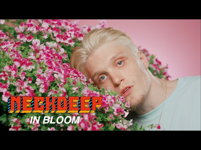 Neck Deep - In Bloom (Official Music Video)