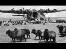 Воздушный извозчик (1943) смотреть онлайн