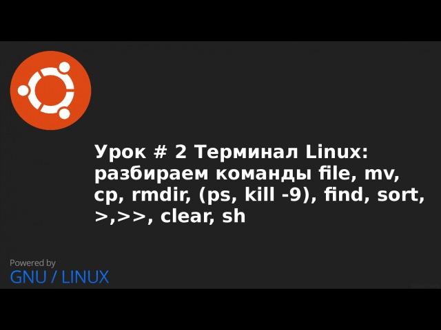 Видео урок 2 Терминал Linux команды file, mv, cp, rmdir, ps, kill 9, find, sort, , clear